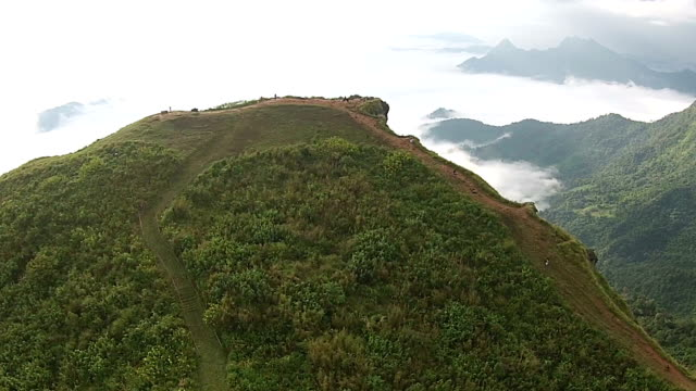 Forest mountain with moving top view