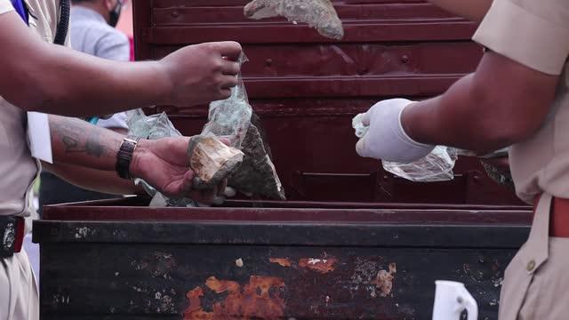 forest officials arrange rhino horns before burning them at a stadium near the kaziranga national park on september 22, 2021 in bokakhat, india. the... - 角のはえた点の映像素材/bロール