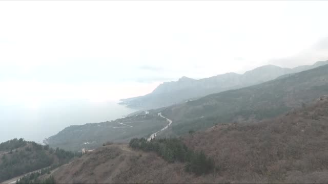 forest on mountain - sevastopol crimea stock videos and b-roll footage