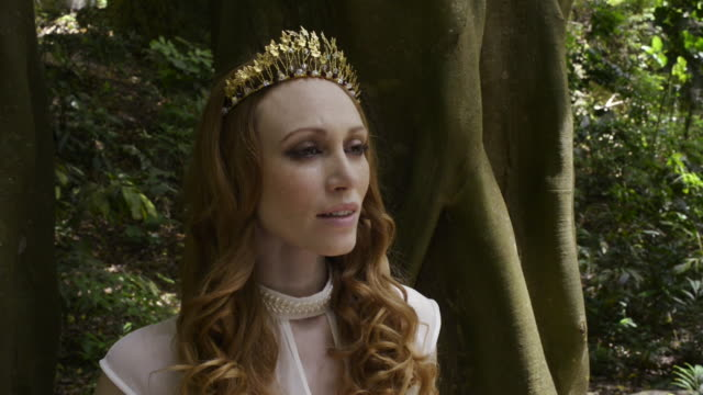 forest queen - beauty queen stock videos and b-roll footage