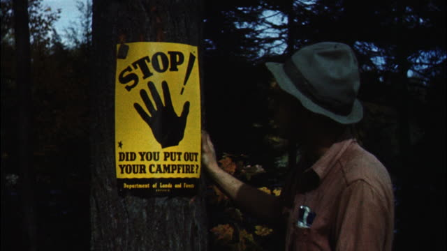 ms forest ranger looking fire warning sign on tree - warning sign stock videos & royalty-free footage