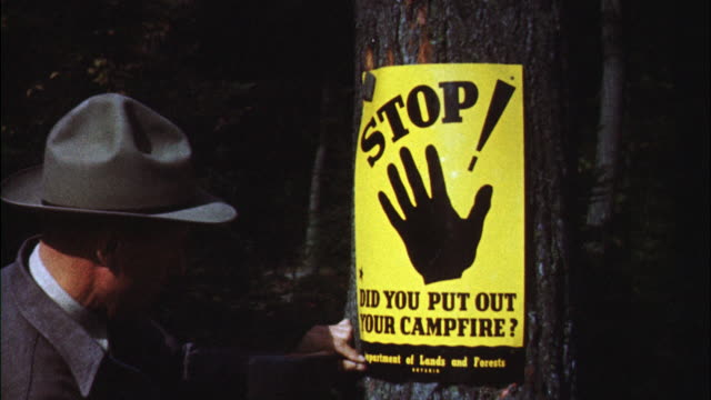 MS Forest ranger putting up fire warning sign on tree