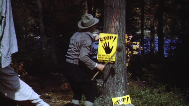 vídeos de stock e filmes b-roll de ms forest ranger putting up fire warning sign on tree - sinal de perigo sinal