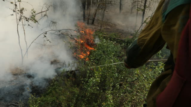 forest rangers and community members attempt to put out forest fires in yakutia region of siberia - arctic stock videos & royalty-free footage