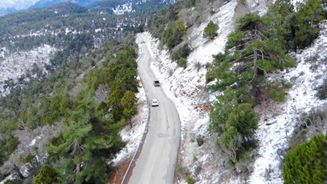 Forest Road Aerial View