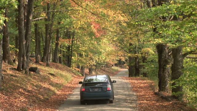 stockvideo's en b-roll-footage met forest road in autumn season in vermont united states - hybride voertuig