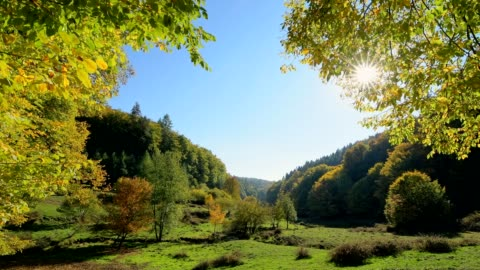 forest valley with colorful autumn leaves and sun, dammbach, spessart, bavaria, germany - horizontal stock-videos und b-roll-filmmaterial