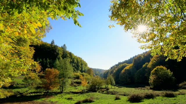 forest valley with colorful autumn leaves and sun, dammbach, spessart, bavaria, germany - baviera video stock e b–roll