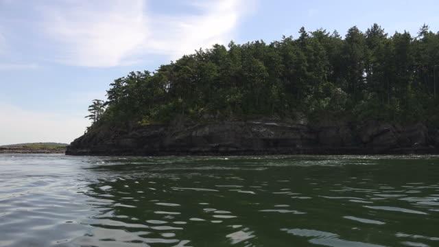 Forested Coastline on Large Seattle Lake