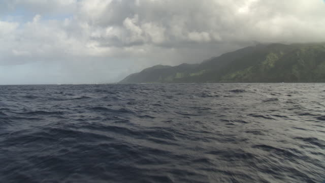forested hills and coastline, tahiti, french polynesia - tahiti video stock e b–roll