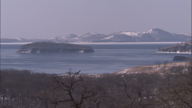 forested inlet and snow covered mountains, russia - inlet stock videos & royalty-free footage