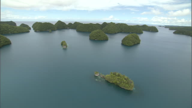Forested limestone islands and lagoons, Palau