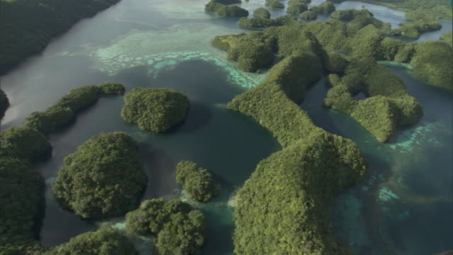 forested limestone islands and lagoons, palau - palau stock videos & royalty-free footage