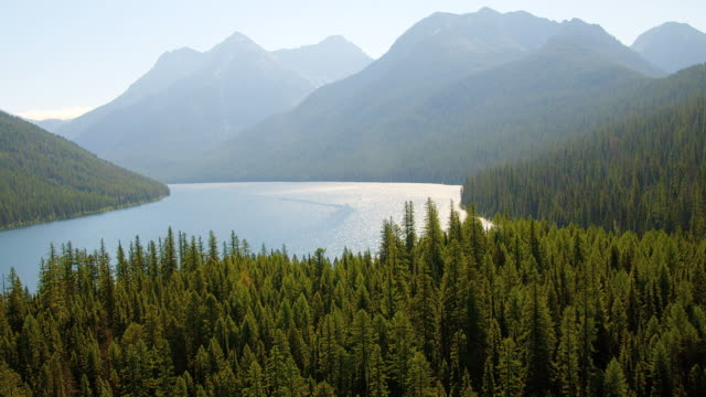 Forested mountains rise above a lake in Glacier National Park.