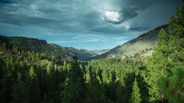 vídeos de stock, filmes e b-roll de vale florestal em ebbetts pass - time lapse - norte da califórnia
