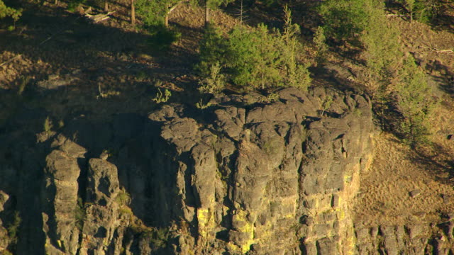 ms aerial forested volcanic bluff and basalt columns/ oregon, united states - basalt stock videos & royalty-free footage