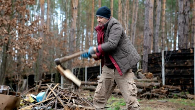 Forester chopping firewood for heating at home.
