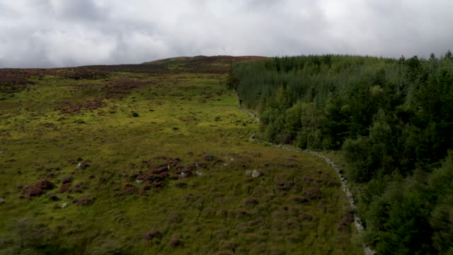 forestry marks the border between northern ireland and ireland on august 28 2019 in omeath ireland the 310m/500 km border runs through carlingford... - ireland stock videos & royalty-free footage