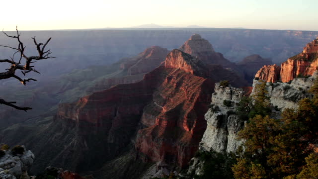 forests and cliffs north rim grand canyon national park arizona - oak stock videos and b-roll footage