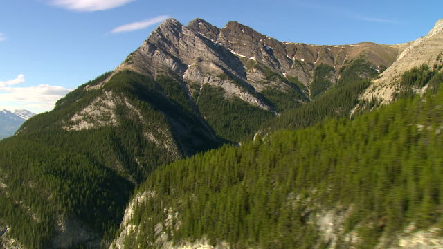 forests grow on the lower slopes of the rocky mountains. - montagne rocciose video stock e b–roll
