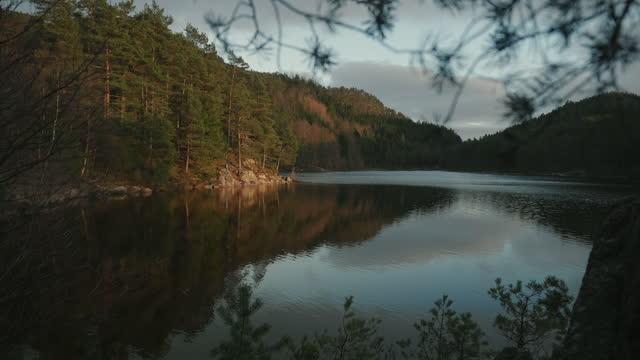 ノルウェーの森:晩春の夕日の湖畔の木々の詳細 - とげ点の映像素材/bロール