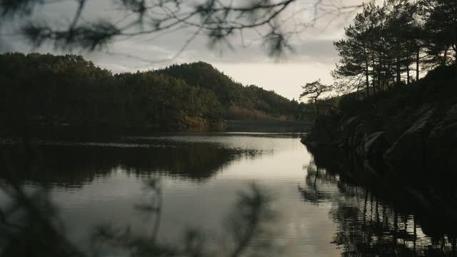 vídeos y material grabado en eventos de stock de bosques de noruega: detalles de árboles junto a un lago en una puesta de sol a finales de primavera - the nature conservancy