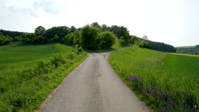 forked field road in spring - entscheidung stock-videos und b-roll-filmmaterial
