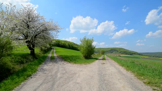 forked gravel road with blooming cherry tree in spring, forked, obereschenbach, hammelburg, district bad kissingen, bavaria, germany - decisions stock videos & royalty-free footage