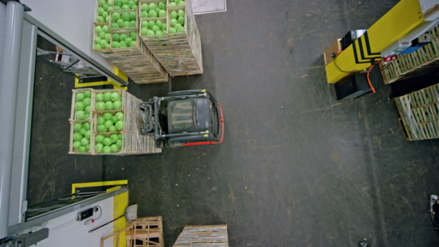 vídeos de stock e filmes b-roll de cs forklift carrying stacks of wooden crates with fresh produce out of the warehouse hallway - grupo grande de objetos