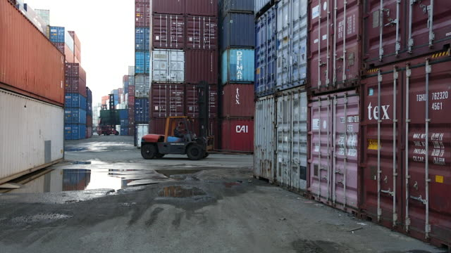 WS TD Forklift in container yard / Singapore