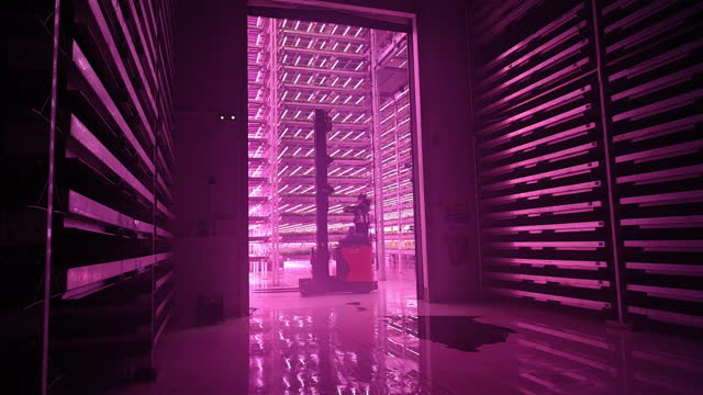 forklift operating in led-lit vertical farm - less than 10 seconds stock videos & royalty-free footage