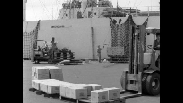 forklift trucks move pallets of boxes around new york dockside - freight transportation stock videos & royalty-free footage