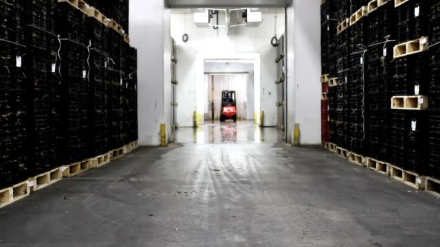 carrello elevatore a forca lavoro coperto - deposito video stock e b–roll