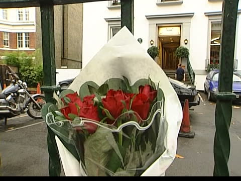 former beatle george harrison: death announced; itn england: london: abbey road ext people writing messages on wall outside recording studios where... - itv lunchtime news stock videos & royalty-free footage