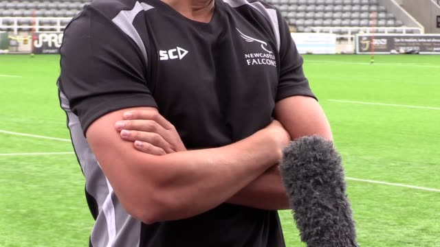 former england fly-half toby flood said he thinks the newcastle falcons will soon be playing top tier european rugby, after resigning for the club... - toulouse stock videos & royalty-free footage