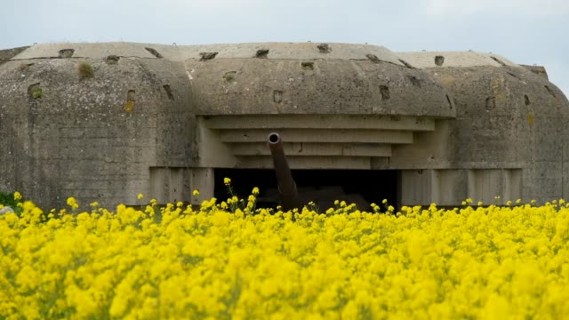 a former german world war iiera artillery bunker on may 3 2019 at longuessurmer france june 6 will mark the 75th anniversary of the dday invasion in... - 75th anniversary stock videos & royalty-free footage