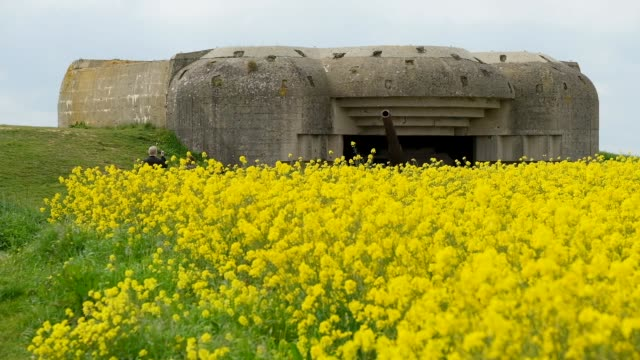 a former german world war iiera artillery bunker on may 3 2019 at longuessurmer france june 6 will mark the 75th anniversary of the dday invasion in... - d day stock-videos und b-roll-filmmaterial