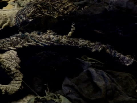 former serb concentration camp at old mine in omarska / skeleton remains from mass graves; human teeth, bones and clothes laid out on floor /... - human body part video stock e b–roll