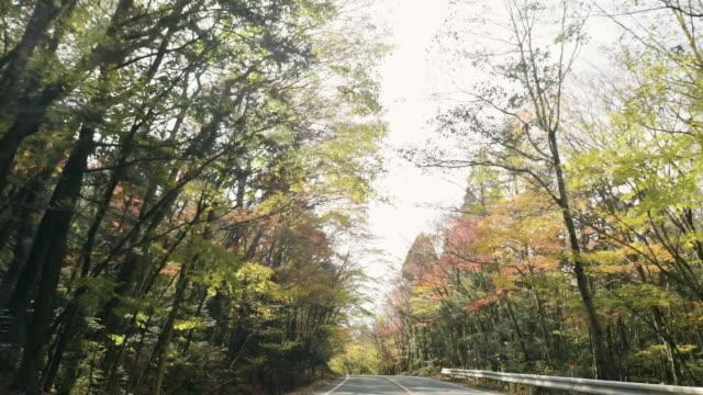 POV: Forrest à travers la vitre de la voiture