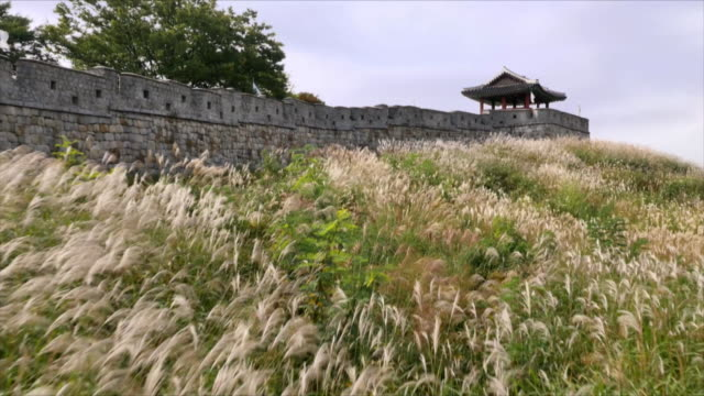 fortified wall at suwon hwaseong fortress (unesco heritage site) - hwaseong palace stock videos and b-roll footage