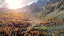 forward aerial over alpine mountain valley and orange larch forest woods in sunny autumn.Alps outdoor mountains wild fall nature at sunset or sunrise establisher.4k drone flight establishing shot