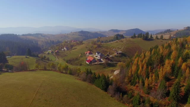 forward aerial over small mountain village with scattered houses and orange larch forest woods in sunny autumn. aerial view of mountain road that meanders between the hills. - barbel stock videos & royalty-free footage