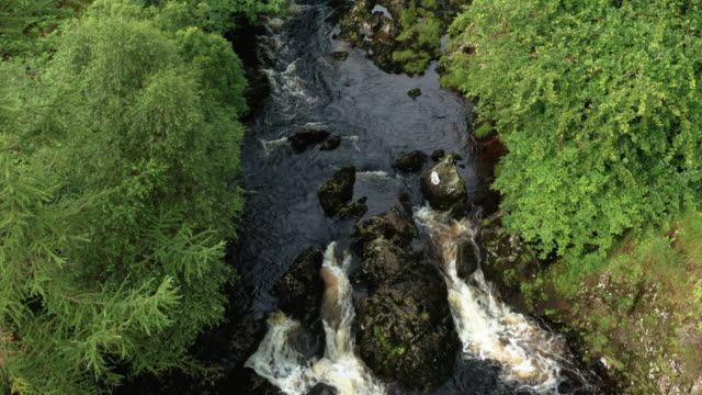 forward dolly shot of fast moving water in a small scottish river in rural dumfries and galloway, south west scotland - johnfscott stock videos & royalty-free footage