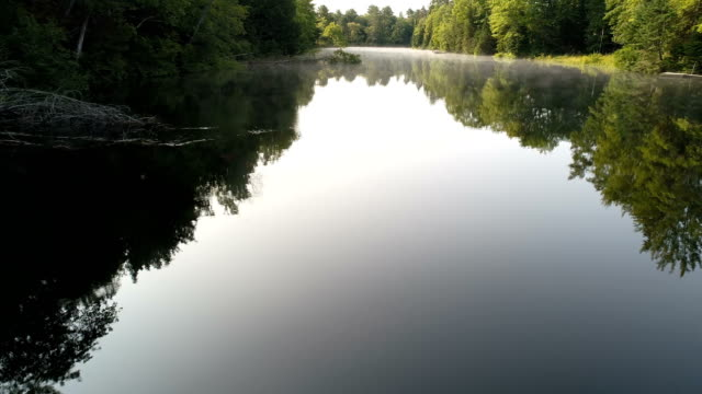 forward track - low over the misty mukoka river - ontario canada stock videos & royalty-free footage