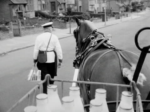 forward tracking shot from a milk cart as a horse pulls it along a quiet suburban street - briglia video stock e b–roll