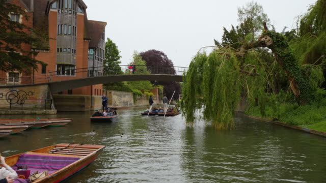 forward tracking shot moving along the river cam, cambridge. - babies in a row stock videos & royalty-free footage