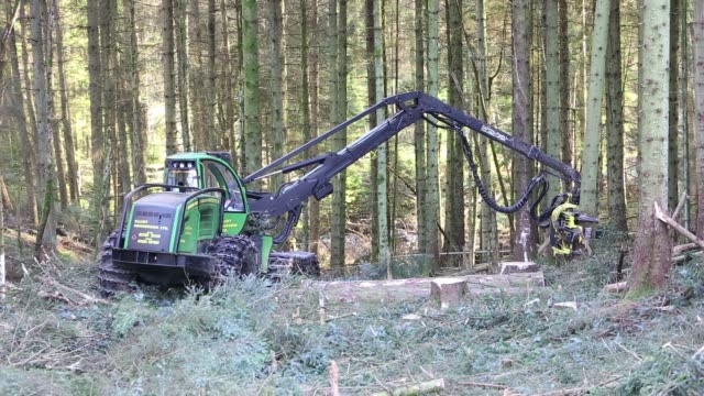 A forwarder, a specialist logging machine cutting down timber in Grizedale Forest, Lake District, Cumbria, UK.