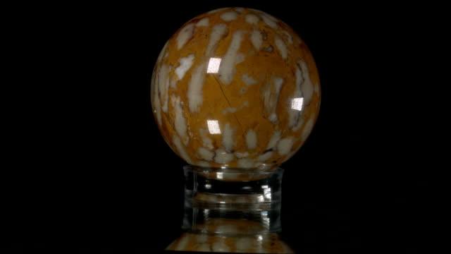 vídeos de stock e filmes b-roll de fossil coral globe turning - cor isolada