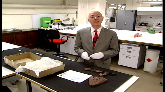 london science museum up shots of rachel bowden laying out pieces of fossil on table reporter to camera dr jennifer clack interview sot it's one of... - reptile stock videos & royalty-free footage