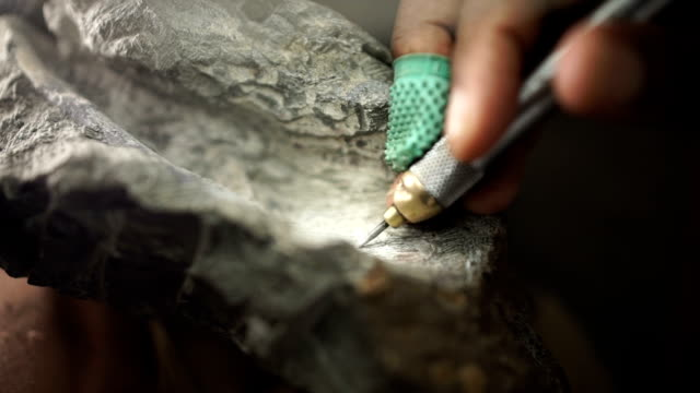 cu fossil rock/ muldersdrift/ south africa - archaeologist stock videos & royalty-free footage